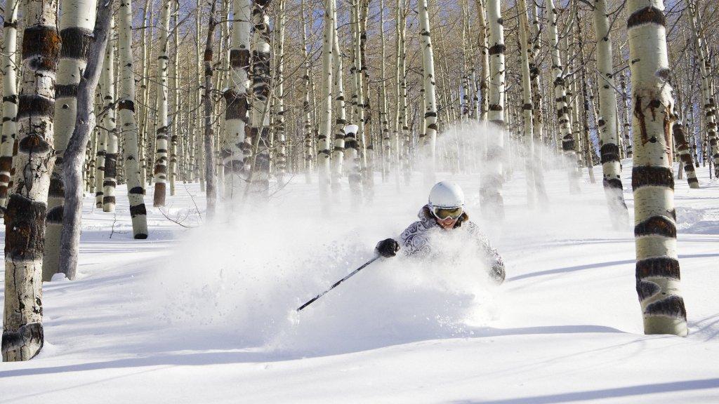 ogden downhill skiing