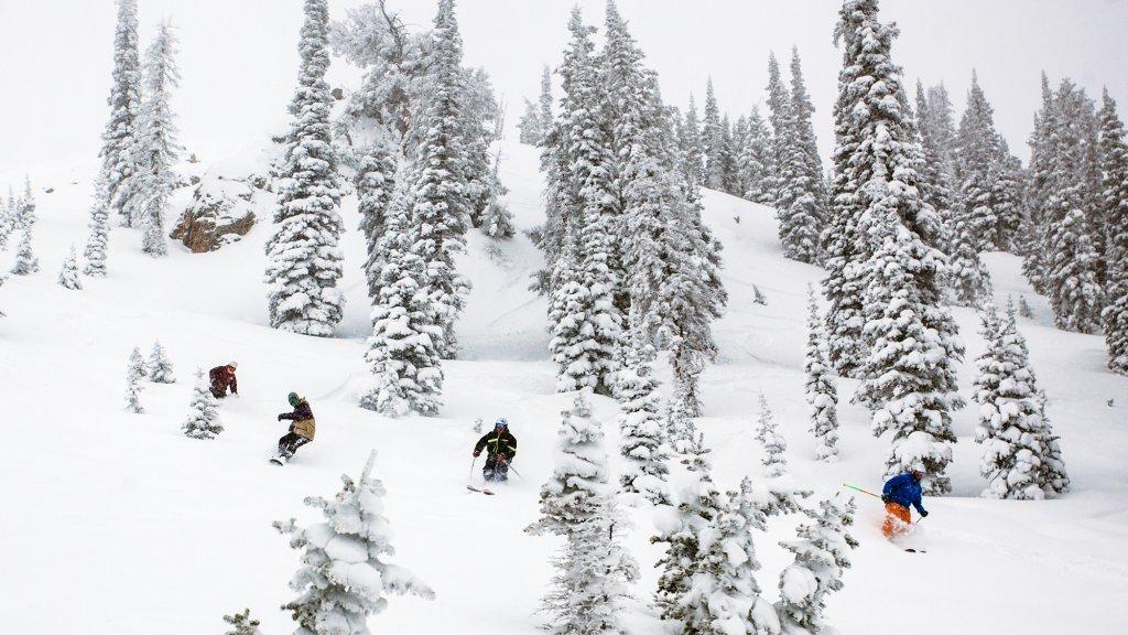skiing ogden
